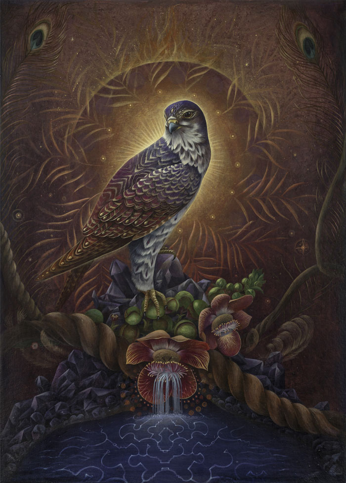 2-the-falcon-of-ayahuma-web